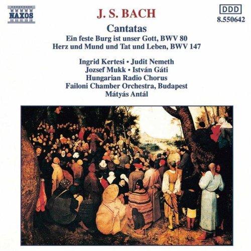 http://www.bach-cantatas.com/Pic-Rec-BIG/Antal-C02a[Naxos-CD].jpg
